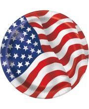 PLATOS GRANDES USA 8 UNIDADES