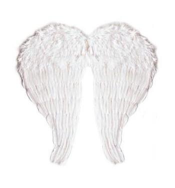 ALAS ANGEL PLUMA