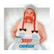Disfraces Asterix Y Obelix